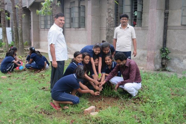 Jawahar Navodaya Vidyalaya-Green Day