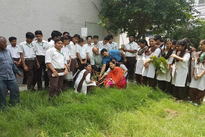 Shiv Jyoti Public School-Plantation