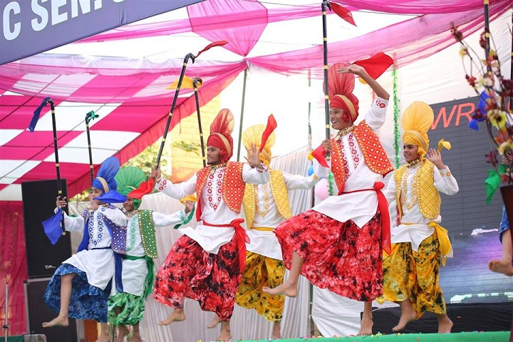 Shri Dasmesh Public Senior Secondary School-Annual Day