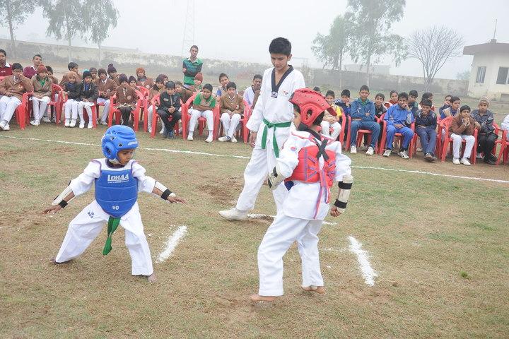 Shri Guru Angad Dev Public School-Karate