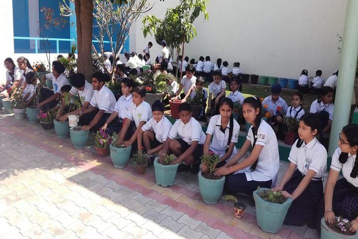 Shri Guru Tegh Bahadur International Senior Secondary School-Planting