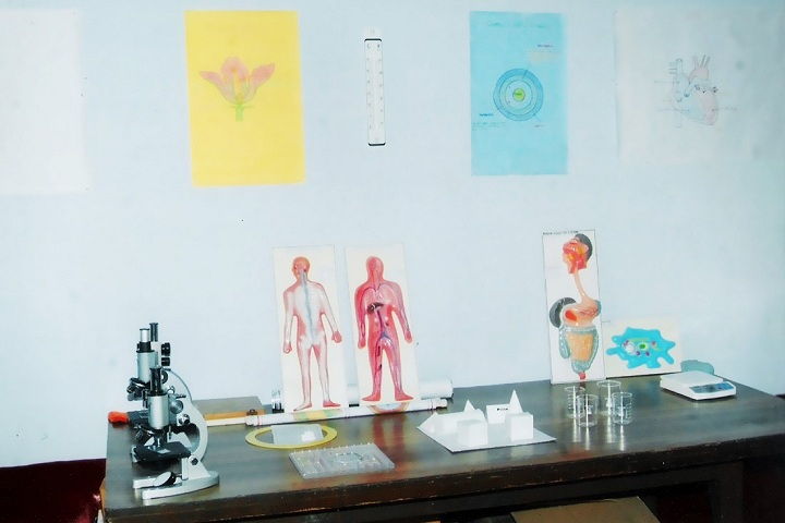 Singhpura International School- biology lab