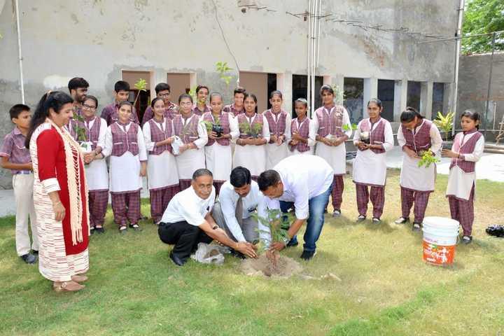 Smt Karam Bai Dav Centenary Public School-Tree Plantation
