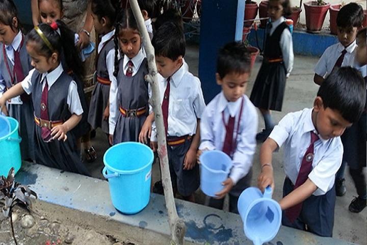 St Farid Public School-Activity