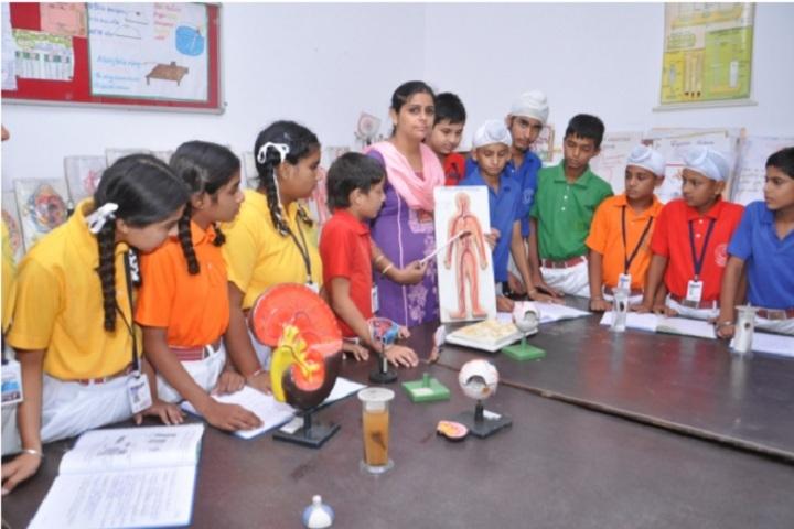 St Soldier Elite Convent School Chawinda Devi-Biology Lab