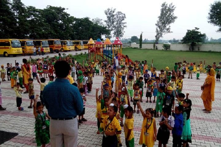 Sukhjinder memorial public school-Activity