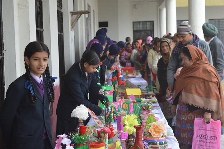 Sukhjinder Memorial Public School-Art Exhibition