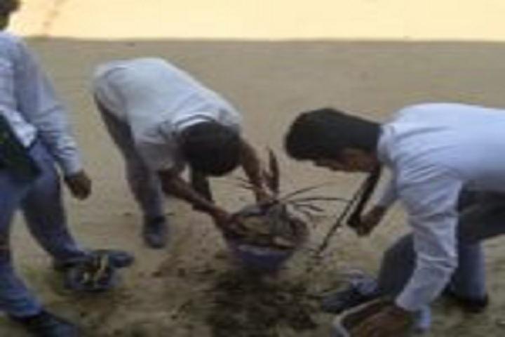 Kainat International School-Environmental Day