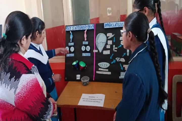Uma Rana Public School-Creative Umarains