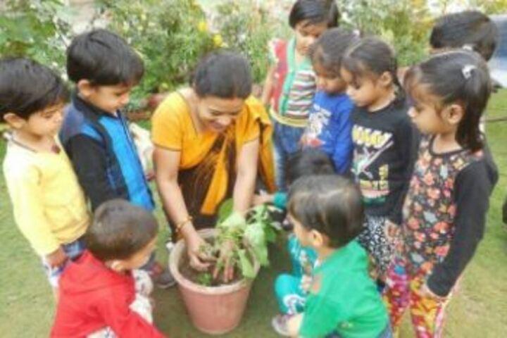 Aklank Public SchoolPlantation