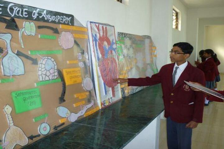 Aklank Public SchoolScience Exhibition