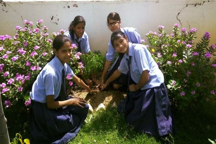 All Saints International School-Tree Plantation