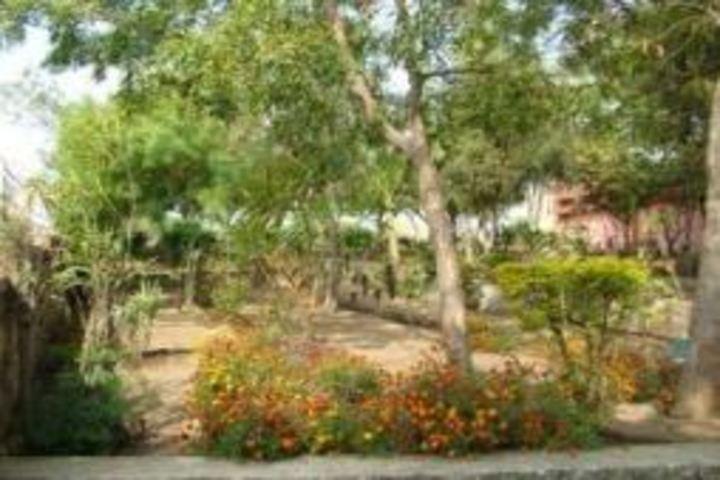 Atomic Energy Central School No 4-Botanical Ground