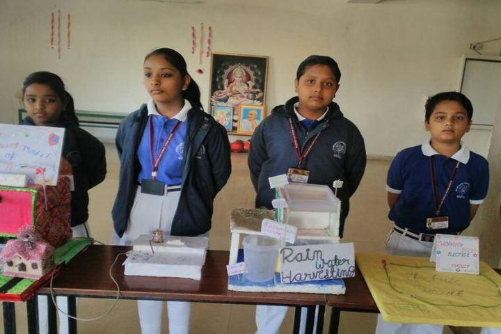 Bhagwan Das Pareek Dream School-Science Exhibition