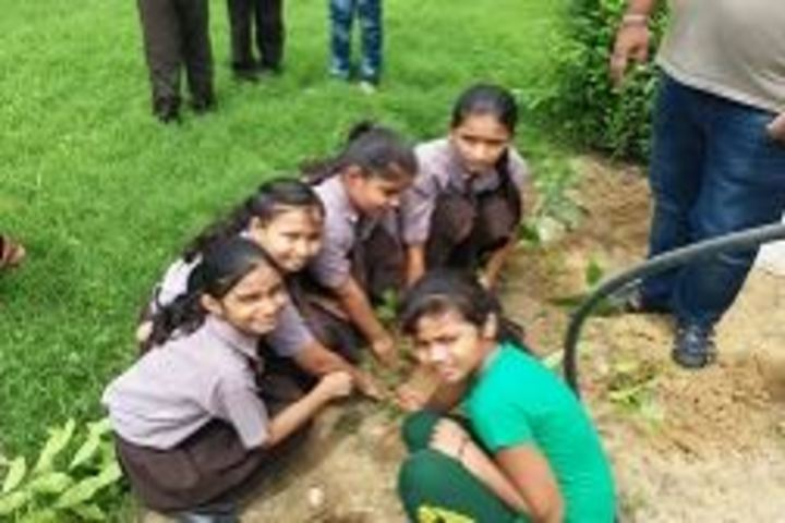 Bhagwan Das Pareek Dream School-Tree Planatation