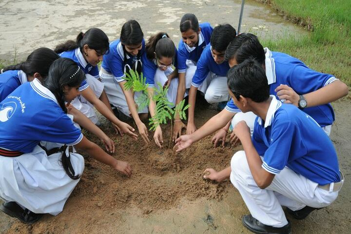 Central Academy Senior Secondary School-Tree Plantation