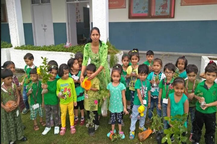 Chambal Fertilisers Dav Public School-Tree Plantation