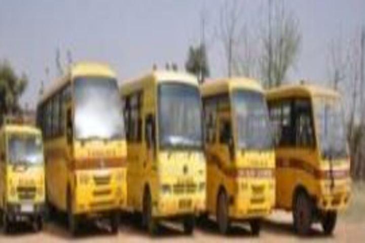 D V M Public School-Transport