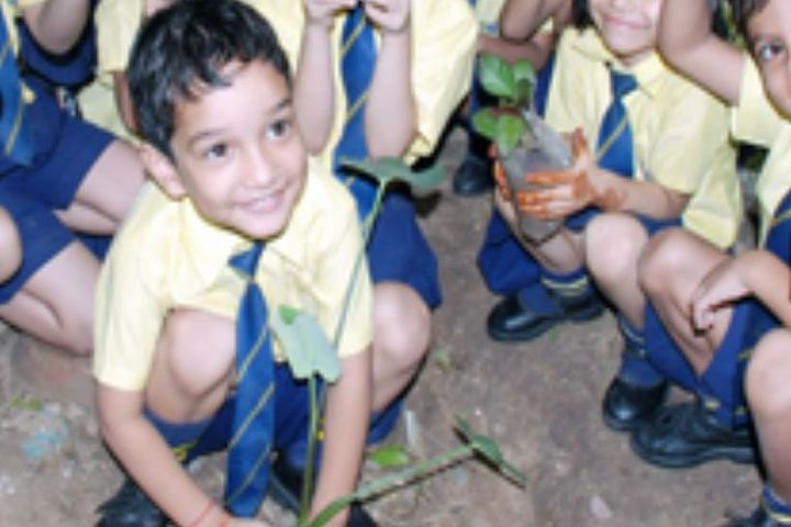 Decent School-Tree Plantation