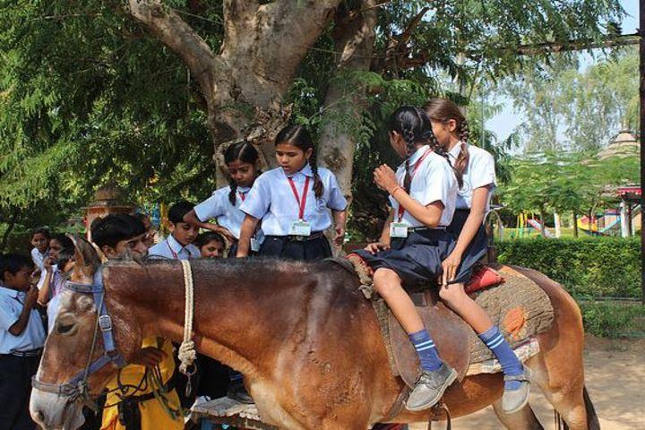 Dream International SchoolHorse Riding
