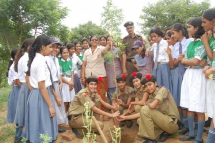 Dundlod Vidyapeeth-Tree Plantation