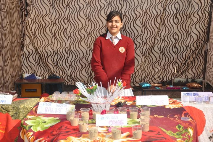 Ganganagar Public School-Stall