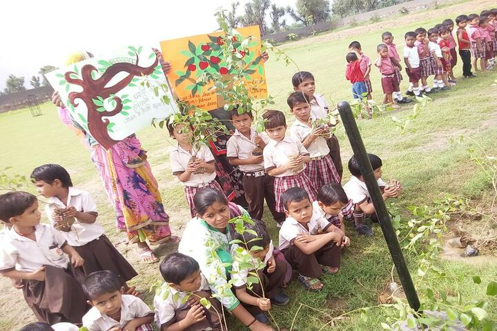 Global public school-Plantation Activity