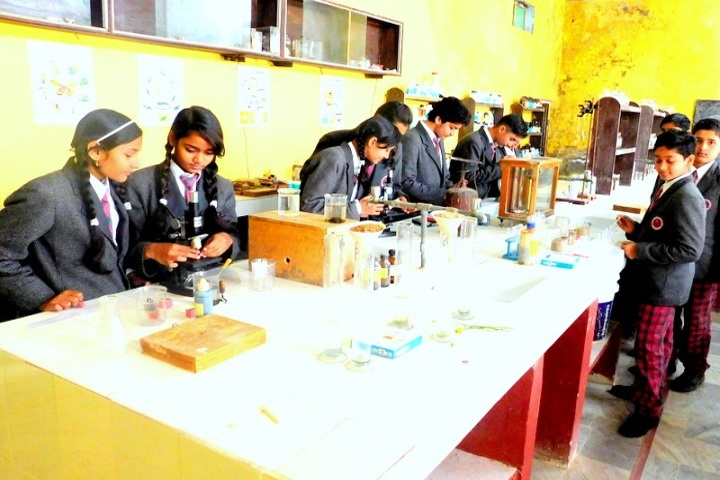 Holy Heights Convent School-Biology lab
