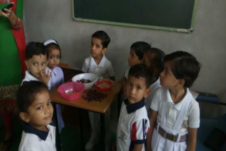 Indian Public School-Activity