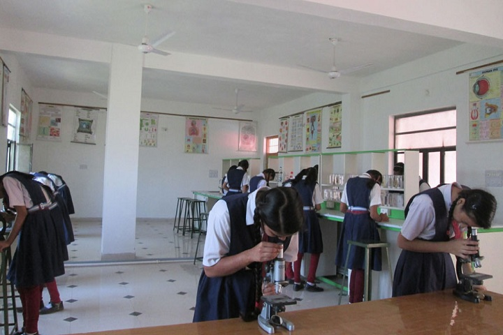 M B Public School-Biology labs