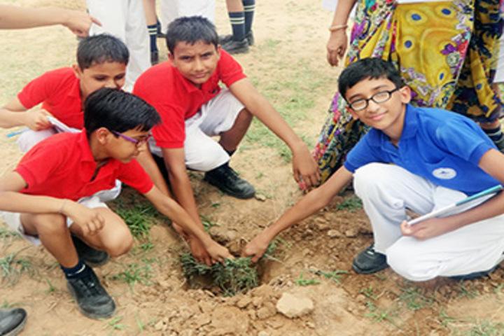 Mount Litera Zee School-Plantation