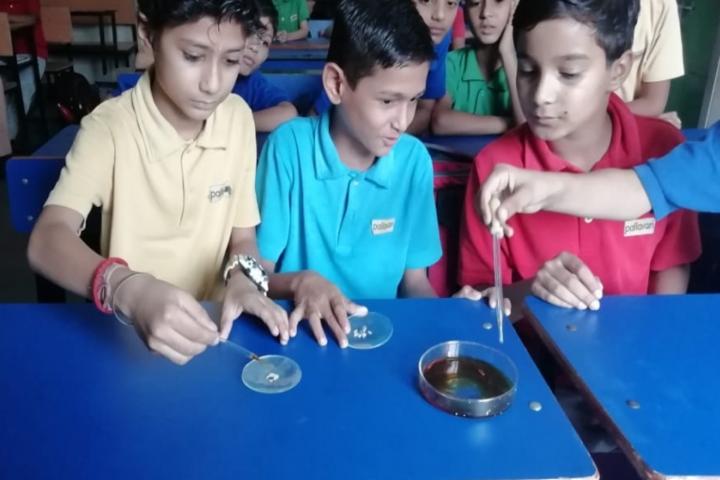 Pallavan Uchatar Prathmik Vidyalaya-Biology Lab