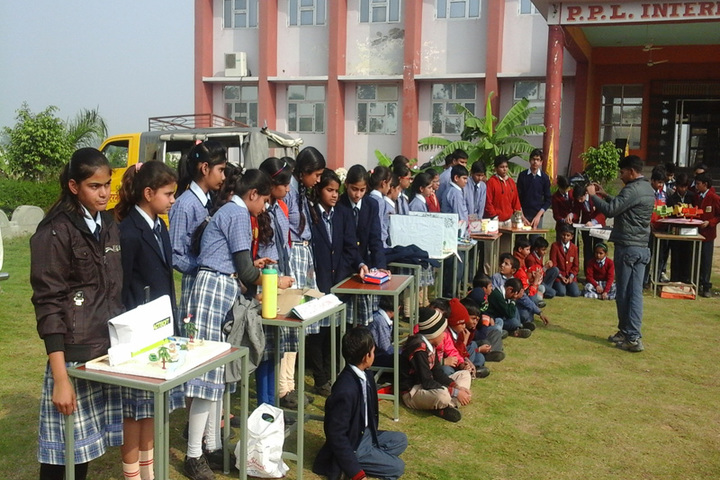Pt Parsadi Lal International School-Science Exhibition