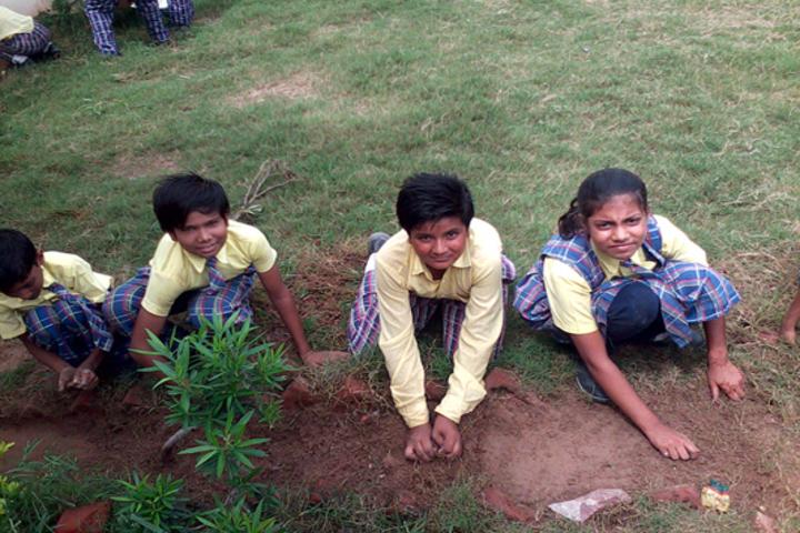 Sandeepan Academy-Plantation Activity