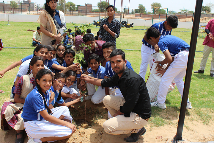 Sanskar International Public School-Plantation Activity