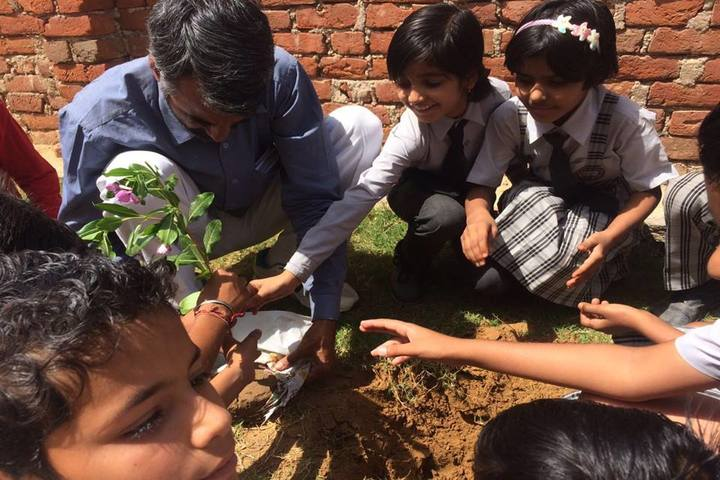 SBS Convent School-Plantation