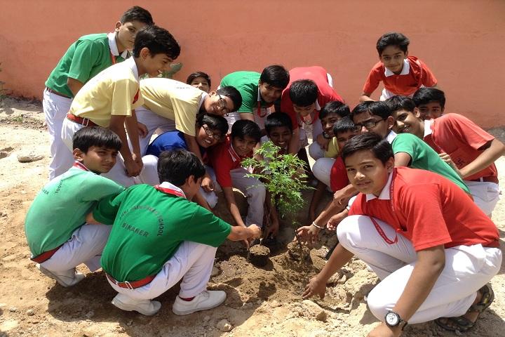 Shri Jain Adarsh Vidya Niketan-Others plantation