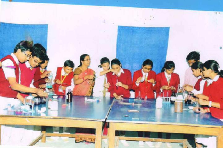 M N Jha D A V Public School- Chemistry Lab
