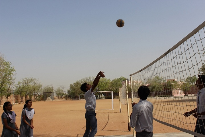 St Anselms Senior Secondary School-Sports vollyball