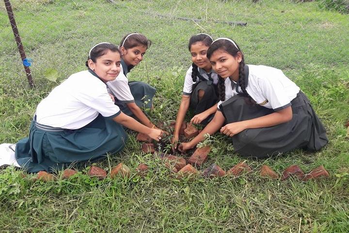 St JosephS International School-Others plantation