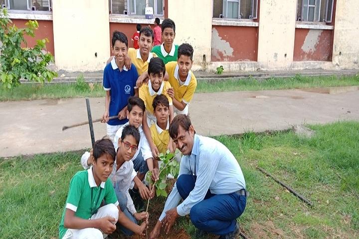 Swami Vivekananda Government Model School-Tree Plantation
