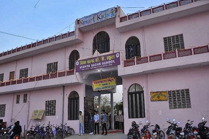Vidhya Sagar Senior Secondary School-Campus