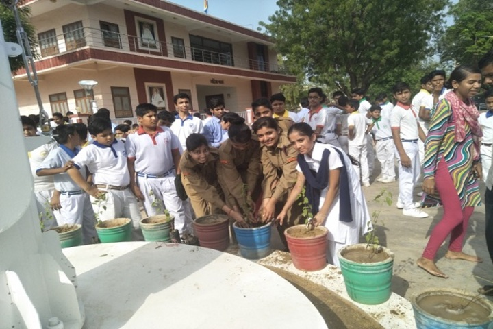 Vimal Vidya Vihar Senior Secondary School-Plantation