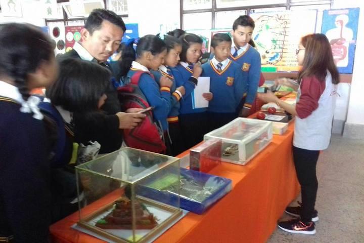 Government Secondary School-Exhibition