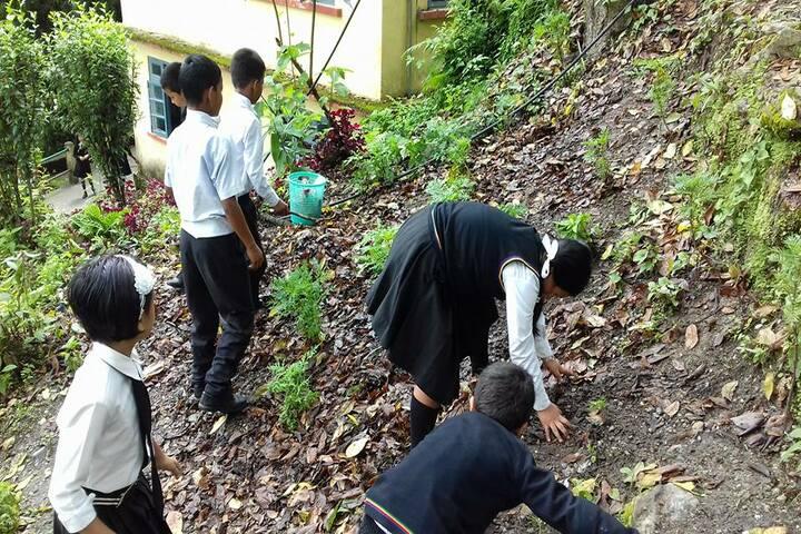 Government Senior Secondary School-Swatchbharath
