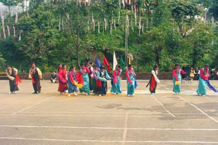 Padma Odzer Choeling Secondary School-Activity