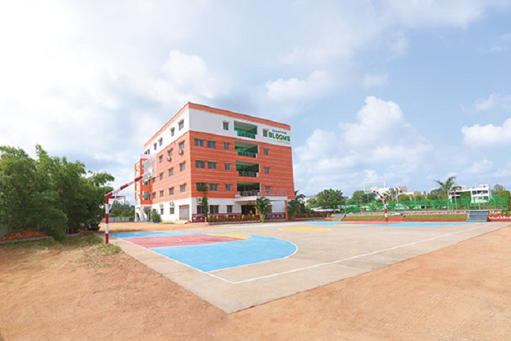 Bhashyam Blooms The Global School-School Building