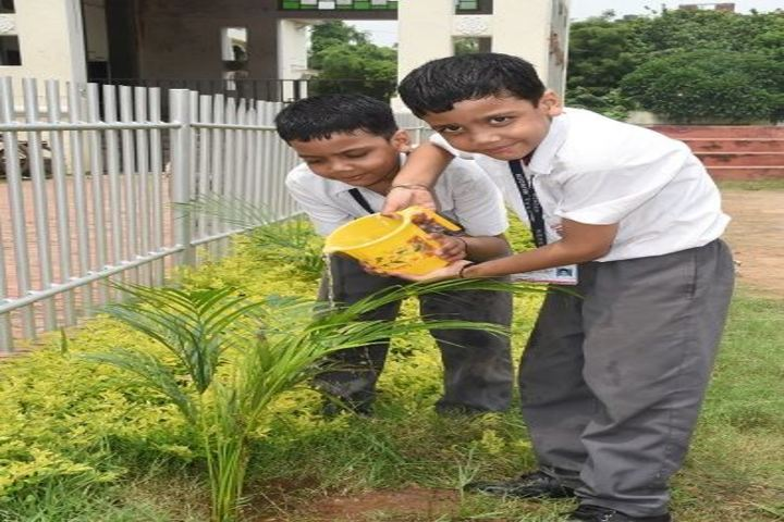 New Era Public School-Plantation