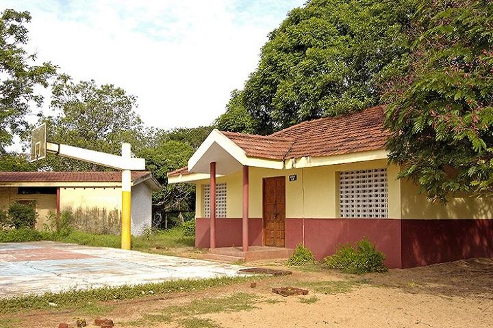 Besant Arundale Senior Secondary School-Sports playground
