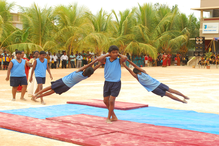 Blossom Public School-Activity